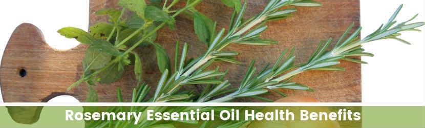 Rosemary Essential Oil Health Benefits