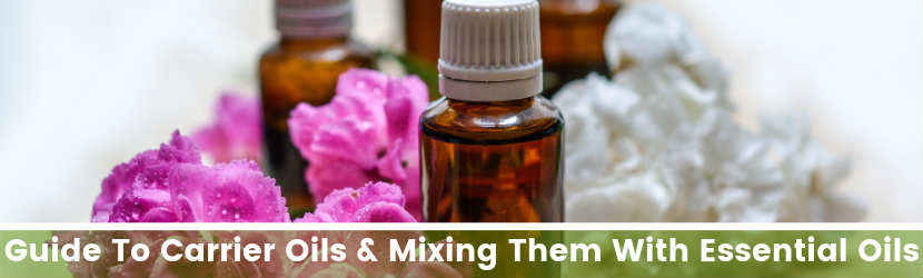 Guide To Carrier Oils & Mixing Them With Essential Oils