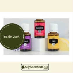 Young Living Reviews