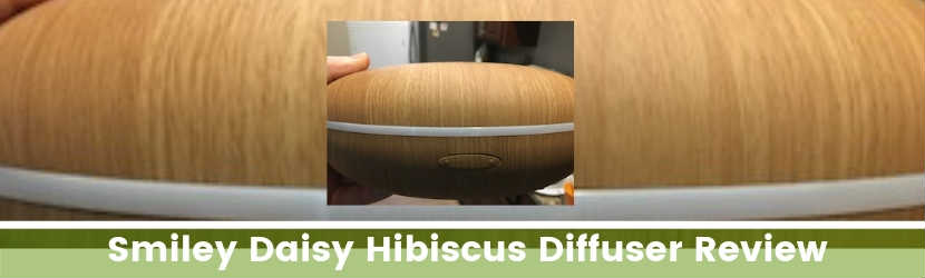 Smiley Daisy Hibiscus Diffuser Review
